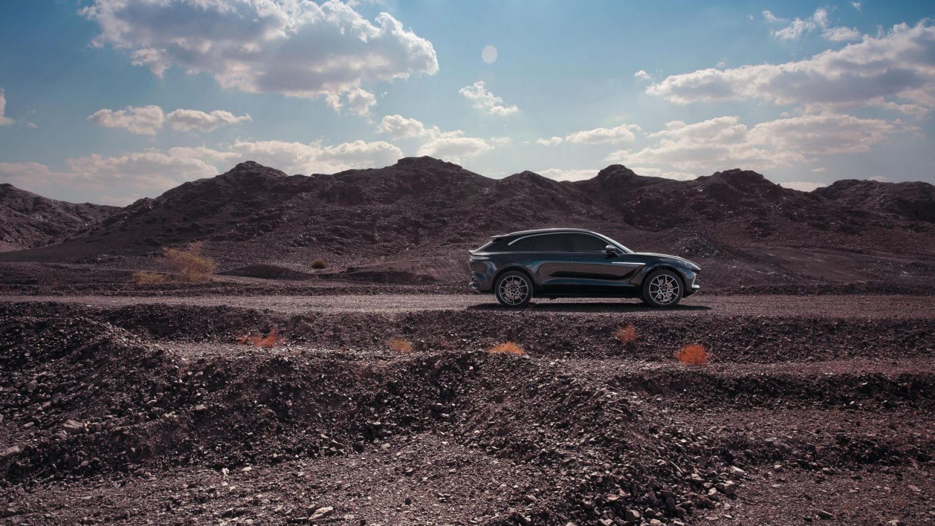 aston-martin-dbx-in-the-middle-east-28-jpg.