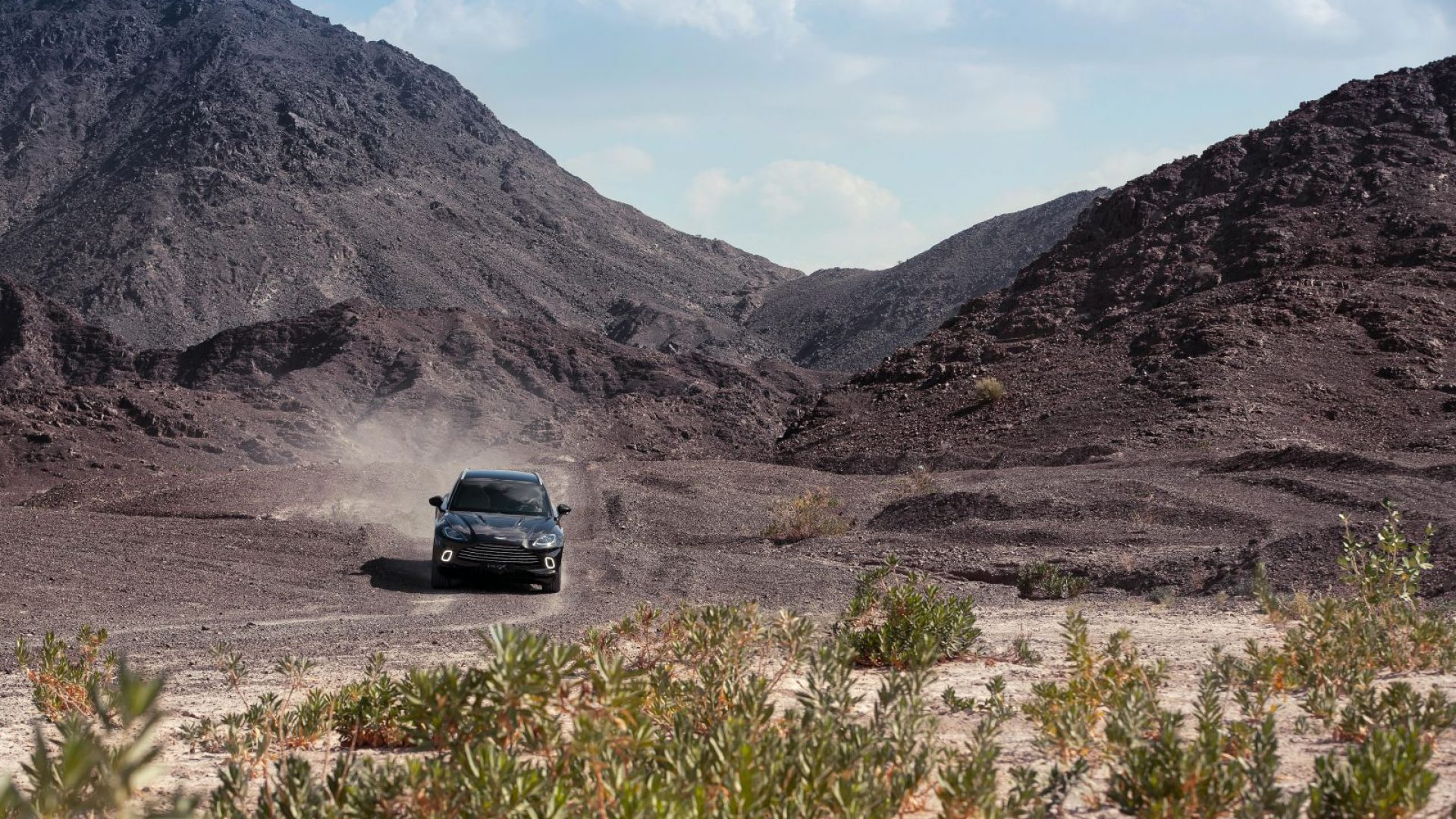 aston-martin-dbx-in-the-middle-east-29-jpg.